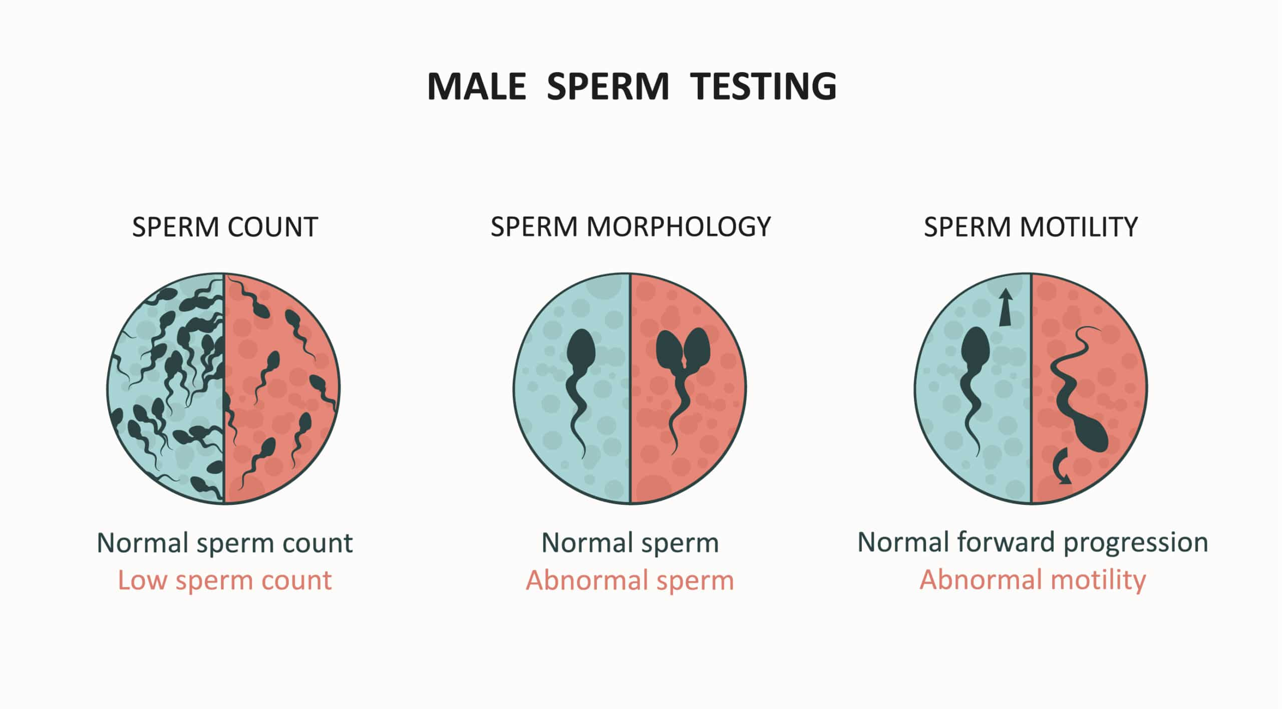 sperm testing