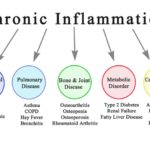 7 Consequences of Chronic Inflammation