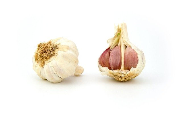 garlic inhibits platelet aggregation